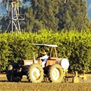 Our Farm Tours Highlight Our Local Agriculture