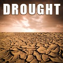The Drought: A Slow-Motion Disaster
