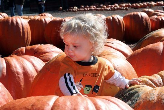 pumpkins-kid